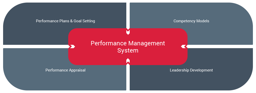 Image result for Performance Management Systems